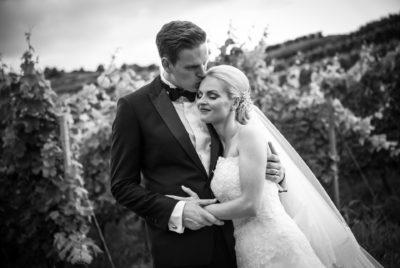 Hochzeitsreportage Freiburg Kaiserstuhl Bräutigam küsst Braut vor dem Reben